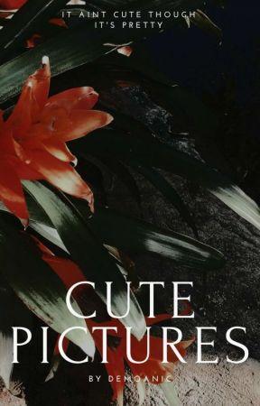 ❁ Cute Pics。 by demoanic