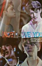 I (NOT) LOVE YOU <CHANBAEK> by Park_byunazz