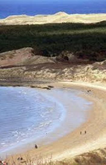 The Sands of Gullane