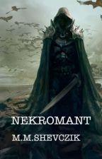 Nekromant by MartinShevczik