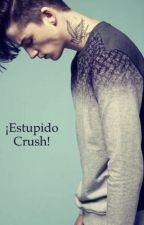 ¡Estupido Crush! by AreGutierres