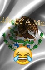 The Life Of A Mexican by Okay_Celeste