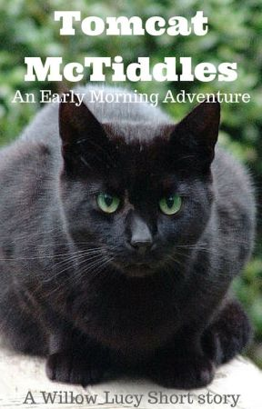Tomcat McTiddles | An Early Morning Adventure by Willow_Lucy
