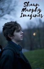 Shaun Murphy Imagines by blushinghard