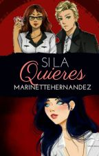 Si la quieres [One shot Au] by MarinetteHernandez