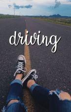 driving | hannie by lovelyleblanc
