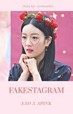 Fakestagram [Apink x Exo] by chubbom_