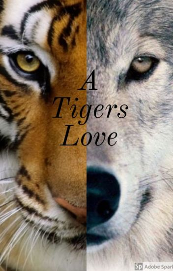 A Tigers Love✔ [Completed]