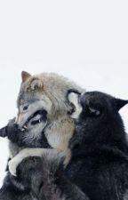 La perdición del lobo- L.S. Adaptación by Anikatonks