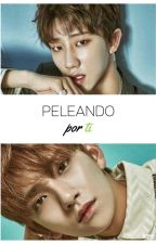 The8(Minghao)& Joshua (Hetero)/Peleando por ti by happygreenhope