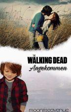 Angekommen (Carl Grimes, The walking dead FF) by moonriseavenue