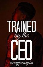 Trained by the CEO by tooturnttara_