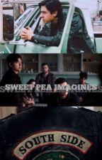 Sweet Pea Imagines by JugsBeanie
