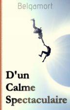 D'un Calme spectaculaire by Belgamort