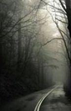 Karanlık Bir Aydınlanma by MegafonYok