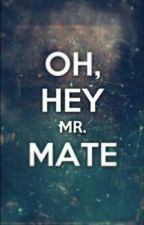 Oh, Hey Mr.Mate [ON HOLD] by Elie_Jo