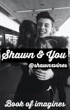 Shawn & You (Book Of Imagines) by shawnxvines