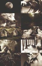 Vampire and Werewolf Rp by harryznipplez