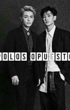 Polos opuestos. by NahirSarmiento