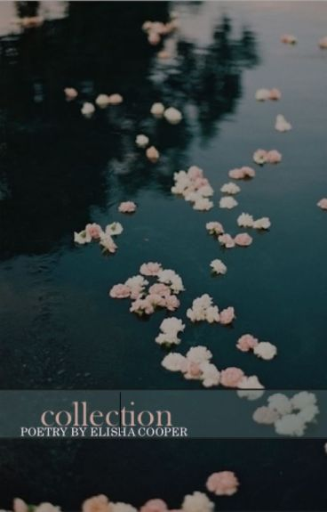 A  Collection by anonymo