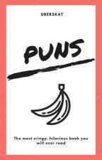 Puns {ON HOLD} by uberskat