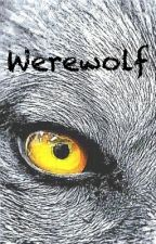 Werewolf || Steve Rogers  by OliwiaFejkiel