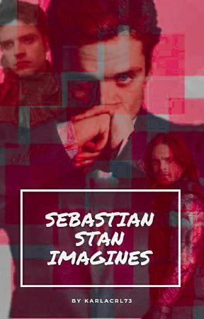 Sebastian Stan Imagines x reader - Lance Tucker | Don't leave me