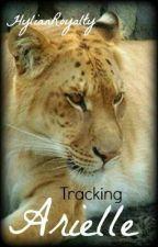Tracking Arielle by HylianRoyalty