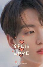 Split Love 》jikook《 by byunpetit