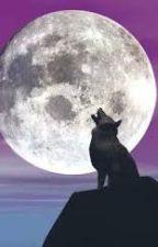 l'appel de la lune by fairyart22