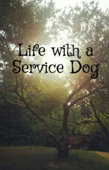 Life with a Service Dog