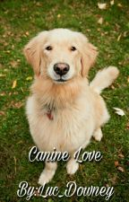 Canine Love by Luc_Downey_