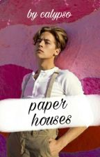 paper houses » ziam by recordpayne