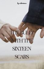The bully with the sixteen scars by xxlevienexx