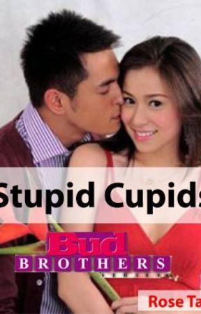 Bud Brothers Series Book 1: Stupid Cupids by RoseTanPHR