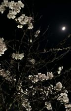 RED | J.HS (Rewriting) by cxibixmochi