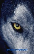 A Trip To Love (mxm) (Brothers Book 1) by wolfwriter1492