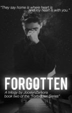 Forgotten (sequel to Forbidden a Nathan Sykes Fanfiction) by JocelynZamora