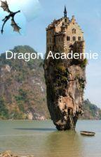 Dragon academy by drakenmeisje