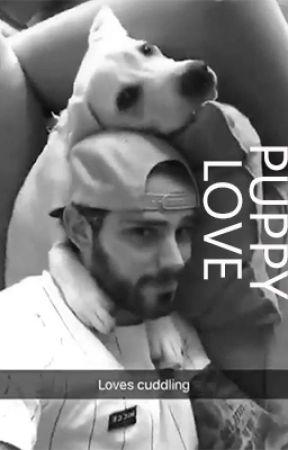 Puppy Love :  Tyler Seguin Fan Fiction by ihearthoodies