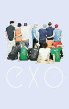 EXO_Song by sallyfarraj81