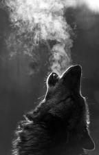 Wolf Life by IAmAGreekWolf