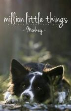 Million Little Things by DysfunctionalFamily