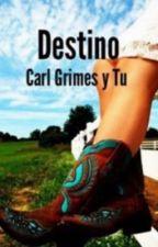 Destino (Carl Grimes y tu) The Walking Dead by JudithMGrimes