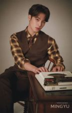 The Dark Side of Mr. Gyu • Kim Mingyu by veroronicayo