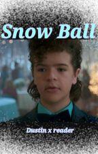 Snow Ball (Dustin x reader) by Terebunnny