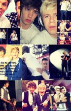 Niam Moments and Proof by PastelSprinkles100