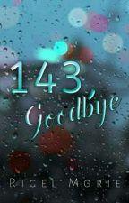 143, Goodbye by RigelMorie