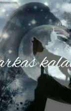 FARKAS KALAND [Shawn Mendes] by lilinagyidai