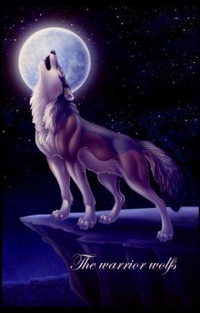 The Warrior Wolfs by vampiergirl-22
